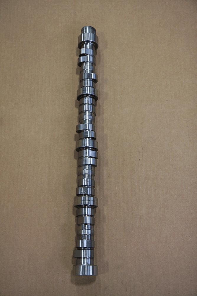 DW-1705-TREE-10